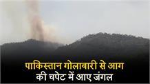 पाकिस्तान गोलाबारी से आग की चपेट में आए जंगल, सैंकड़ों पेड़ जल कर राख