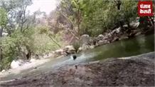 चंद मिनटों में डूब गए तीन भाई, वायरल हुआ मौत का वीडियो