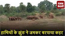 हाथियों के झुंड ने घरों को तोड़ा, मलबे में दबकर 2 मासूमों की मौत
