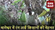 प्रधानमंत्री फसल बीमा योजना से किसानों को मिला लाभ