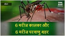 परवाणु में डेंगू का डंक, तीन साल से यही कहानी