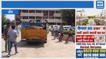 मृत गोवंश को लेकर लघु सचिवालय पहुंचे गौ सेवकों की चेतावनी