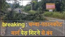 breaking : चम्बा-पठानकोट मार्ग पेड़ गिरने से बंद