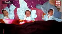 इस गांव में गंगा जमुना सरस्वती ने लिया एक साथ जन्म