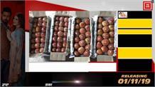 Kashmir से आने वाले सेब की पेटियाँ में से क्या निकल रहा?
