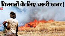 किसानों सावधान! अगर अब Parali जलाई तो बहुत पछताओगे
