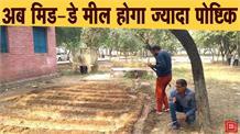 Kitchen Garden Scheme के तहत स्कूलों में हो रही है सब्जियों की खेती