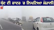 Mohali में छाया कोहरा,  यातायात प्रभावित