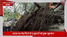 जब रोड के बीचोंबीच आ गिरा बरगद का विशालकाय पेड़, बॉर्डर एरिया का रास्ता हुआ बंद