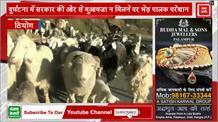 निचले इलाकों का रूख करने लगे भेड़ पालक, कठिनाई भरे सफर में CM से लगाई ये गुहार