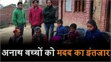 करसोग में 3 अनाथ बच्चे भटक रहे दर-बदर, सरकारी मदद का इंतजार