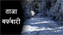 ताजा बर्फबारी से ढकी मुगल रोड, पर्यटकों में उत्साह, मार्ग बंद होने से ग्रामीण परेशान