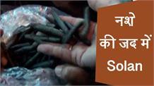 Solan में फल-फूल रहा नशे का कारोबार, 3 महीने में 69 लोग गिरफ्तार