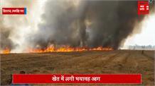 आग ने मचाया तांडव, आधे एकड़ में खड़ी गेहू की फ़सल तबाह