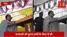 बीजेपी नेता का विवादित बयान:  मायवती को बताया हाथी का गोबर, अखिलेश हाथी के गोबर को सर पर रख कर घूम रहे हैं...