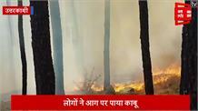 जंगलों में लगी भीषण आग, लाखों की वन संपदा जलकर हुई खाक