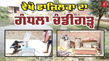 Special Report: देखिए कितनी मुश्किल में हैं इस Chandigarh के लोग