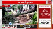 नेपाली पर्यटकों की बस पर गिरा पेड़, दोफाड़ हो गई बस