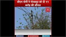 बांस-बल्ली पर लगाए गए बिजली के तारों से मिलेगी निजात, सीएम योगी ने गोरखपुर को दी 11 करोड़ की सौगात
