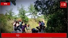 एक साथ कुएं में गिरे 11 जंगली सुअर, देखिए कैसे फॉरेस्ट की टीम ने किया रेस्क्यू