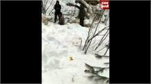 Kullu के शालानीला में गिरा ग्लेशियर, चपेट में आईं 250 से ज्यादा जानें, देखिए हो रहा रेस्क्यू