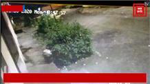 बदमाशों ने पहले चलाई गोलियां फिर फेंका पेट्रोल बम, घटना सीसीटीवी में कैद