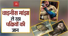 #Haridwar: #Chinese मांझा ले रहा पक्षियों की जान, प्रशासन ने लोगों से की ये अपील