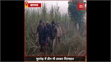 Baghpat : ऑपरेशन क्लीन जारी, मुठभेड़ में तीन गौ तस्कर गिरफ्तार