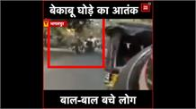 Bhagalpur: देखिए पागल घोड़े ने कैसे मचाया आतंक