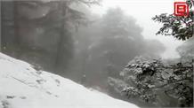 ताजा बर्फबारी से जाखू में जन्नत जैसा नजारा, देखिए मनमोहक तस्वीरें