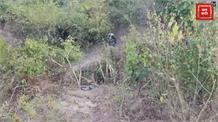 तार ओर झाड़ियों में उलझे Leopard का Live rescue, ऐसे बची जान