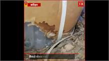 चूहों से Nitish Government परेशान, शराब और बांध के बाद अब गटक गए सरकारी दवाई