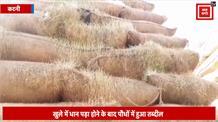 प्रशासन की लापरवाही से करोड़ों का धान पौधों में हुआ तब्दील, अधिकारी सोए गहरी नींद