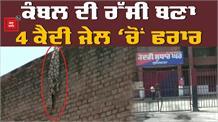 Ludhiana Central Jail में से 4 कैदी फरार, मचा हड़कंप