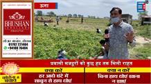 कर्फ्यू में ढील मिलते ही सक्रिय हुए किसान, खेतों से निकाली जा रही आलू की फसल