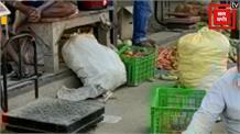 सब्जी की उचित दाम नहीं मिलने से किसान परेशान