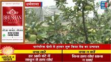 जहां चाह वहां राह... प्रगतिशील बागवान पूर्ण चंद ने शाहपुर में उगाए ऑर्गेनिक सेब