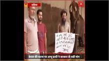 केरल में हथनी को अनानास में बारूद भर के खिलाने की घटना पर अप्पू हाथी ने सरकार से रखी यह मांग