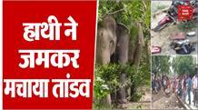 Fatehpur:  बेकाबू हाथी ने जमकर मचाया तांडव, गांव में फैली दहशत