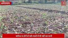 अनंतनाग जिले से रूठे इंद्रदेव ...किसान-बागवान परेशान