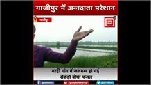 छोटी से लापरवाही और जलमग्न हो गई सैकड़ों बीघा फसल, अन्नदाता परेशान