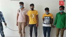 इंदौर नारकोटिक्स की बड़ी कामयाबी, 20 लाख के गांजे समेत 4 को किया गिरफ्तार