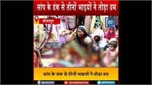 सीतापुर में काल बनकर आए सांप ने तीन सगे भाइयों को मारा डंक, तीनों की मौत