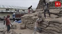 घटिया चावल मामले में नागरिक आपूर्ति निगम की बड़ी कार्रवाई, गुणवत्ता नियंत्रक निलंबित