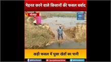 दिन-रात मेहनत करने वाले किसानों की खड़ी फसल बर्बाद, खेत में आया नहर का पानी