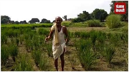 विधायक जी के नहर में पानी छुड़वाने के झूठे दावे से भड़क गए हैं किसान
