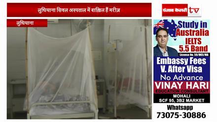 लुधियाना में डेंगू का कहर, ग्राउंड ज़ीरो से रिपोर्ट
