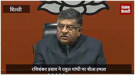 राफेल पर बीजेपी का पलटवार, कहा- क्या राहुल गांधी सुप्रीम कोर्ट से भी ऊपर हैं ?
