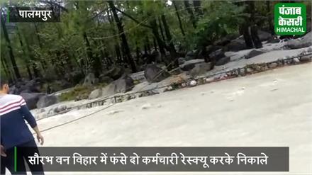 पालमपुर में बरपा कुदरत का कहर, सौरभ वन विहार में बाढ़ जैसे हालात