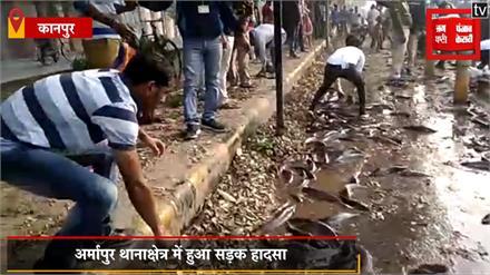 कानपुर की सड़क पर तैरने लगी हजारों मछलियां